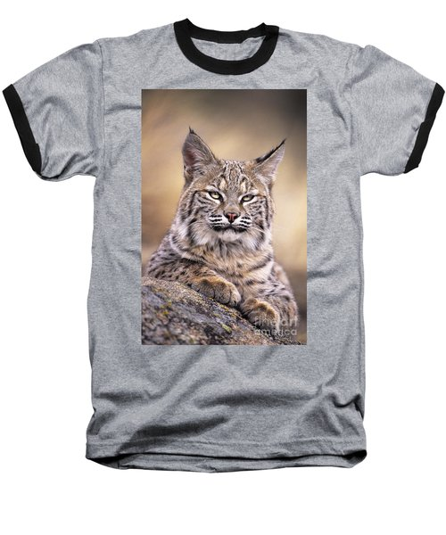 Bobcat Cub Portrait Montana Wildlife Baseball T-Shirt by Dave Welling