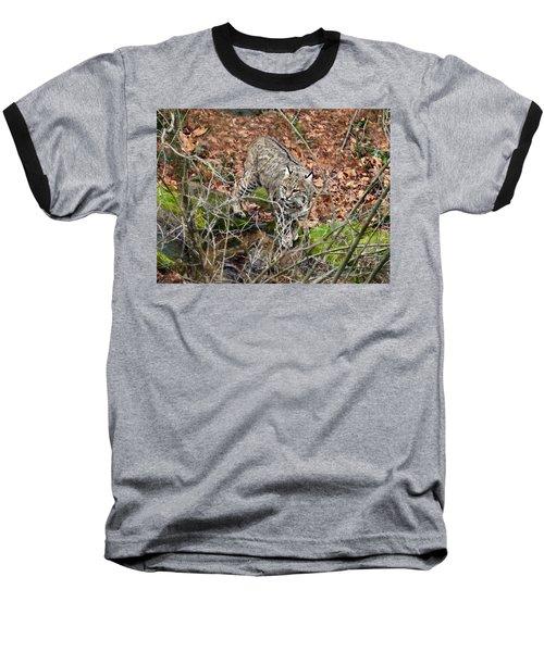 Bobcat Baseball T-Shirt