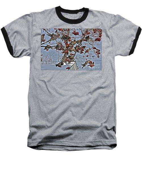 Bohemian Waxwing Feast Baseball T-Shirt