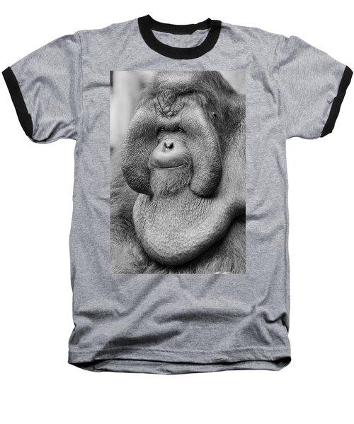 Bornean Orangutan IIi Baseball T-Shirt