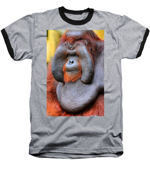 Bornean Orangutan Iv Baseball T-Shirt by Lourry Legarde