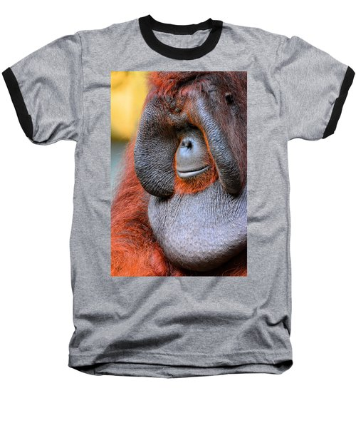Bornean Orangutan Vi Baseball T-Shirt by Lourry Legarde