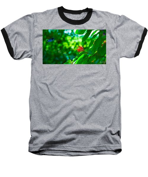 Botanical Garden Butterfly Baseball T-Shirt
