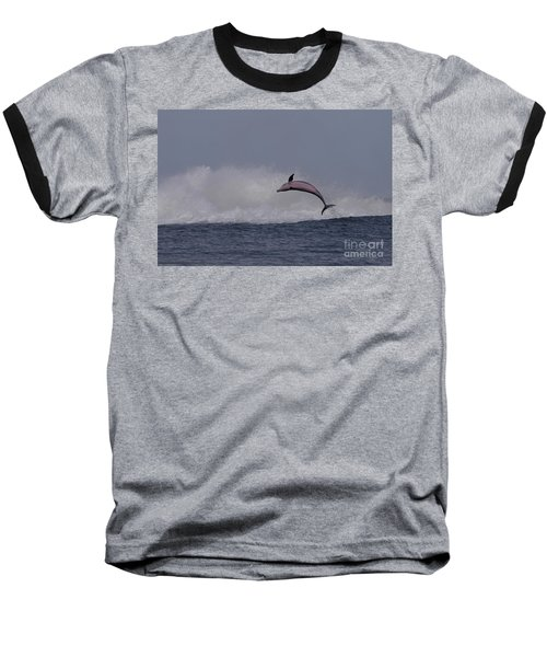 Bottlenose Dolphin Photo Baseball T-Shirt