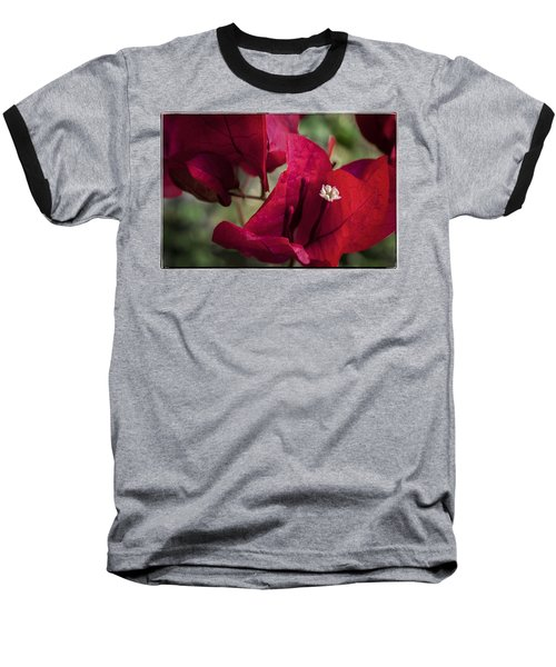 Baseball T-Shirt featuring the photograph Bougainvillea by Steven Sparks