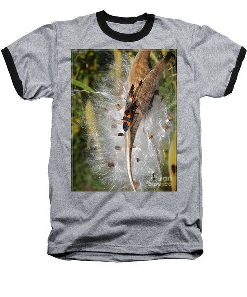 Boxelder On Butterfly Milkweed 2 Baseball T-Shirt by Sara  Raber
