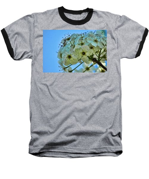 Bradford Pear I Baseball T-Shirt