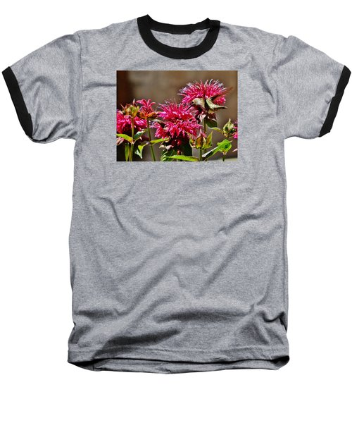 Baseball T-Shirt featuring the photograph Breakfast At The Bee Balm by VLee Watson