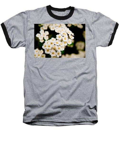 Bridal Veil Spirea Baseball T-Shirt by Brenda Jacobs