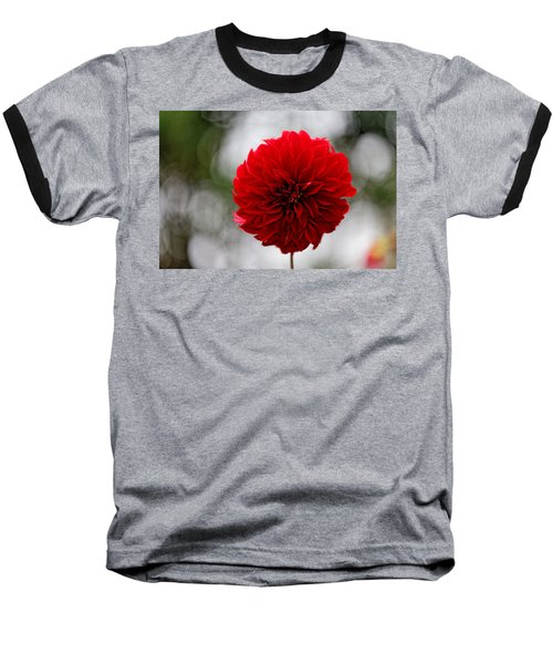 Bright Red Dahlia Baseball T-Shirt