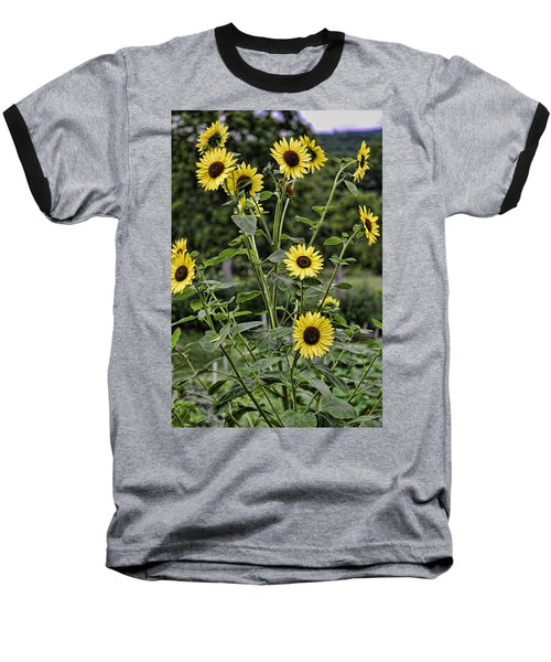Bright Sunflowers Baseball T-Shirt
