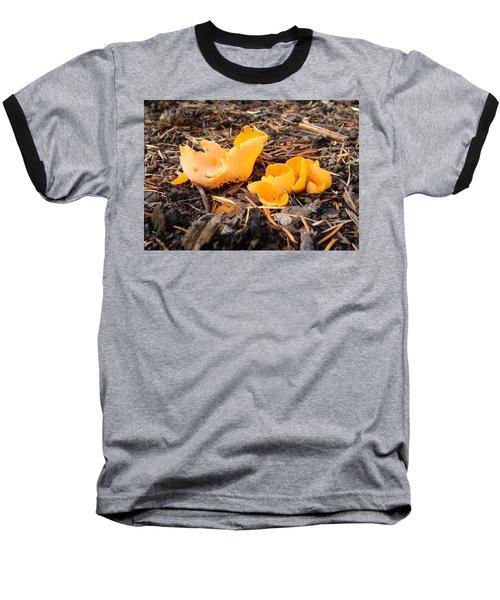 Brilliance In Orange Baseball T-Shirt by Cheryl Hoyle