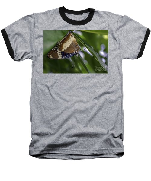 Brilliant Butterfly Baseball T-Shirt