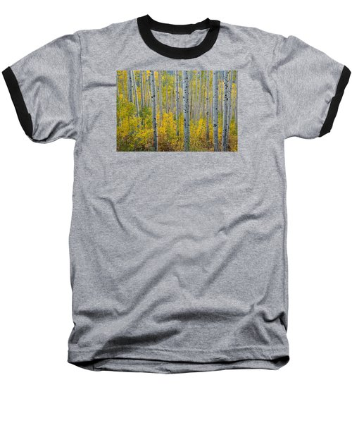 Brilliant Colors Of The Autumn Aspen Forest Baseball T-Shirt
