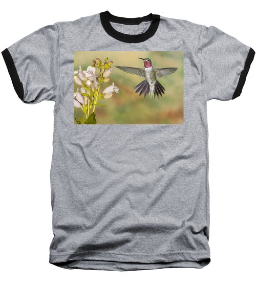 Broad Tailed Hummingbird 2 Baseball T-Shirt
