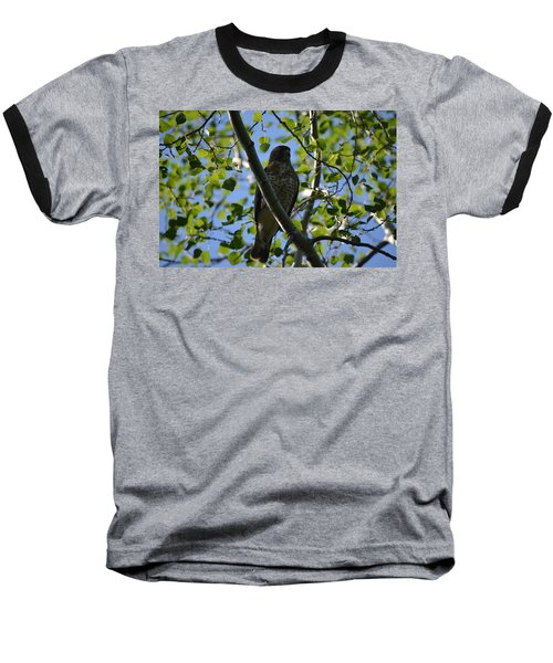 Baseball T-Shirt featuring the photograph Broad-winged Hawk by James Petersen