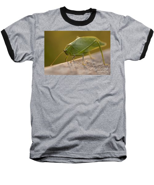 Broad-winged Katydid Baseball T-Shirt