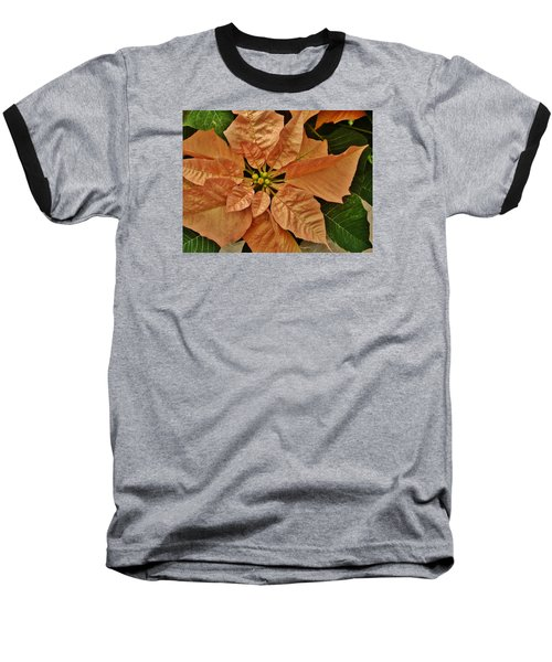 Bronze Poinsettia 3 Baseball T-Shirt