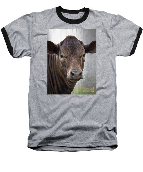 Baseball T-Shirt featuring the photograph Brown Eyed Boy - Calf Portrait by Ella Kaye Dickey