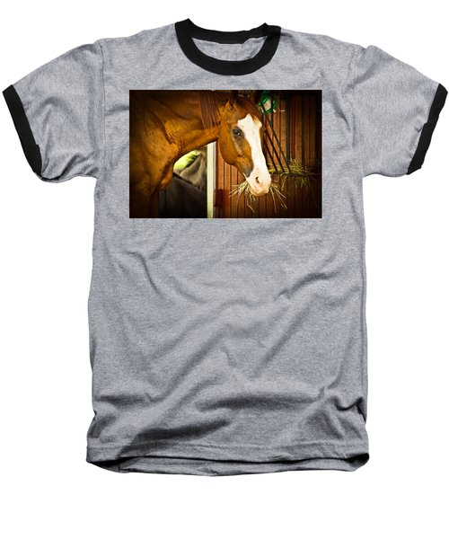 Brown Horse Baseball T-Shirt by Joann Copeland-Paul