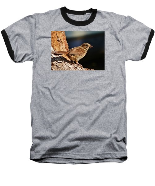 Baseball T-Shirt featuring the photograph Brown Is Beautiful by VLee Watson