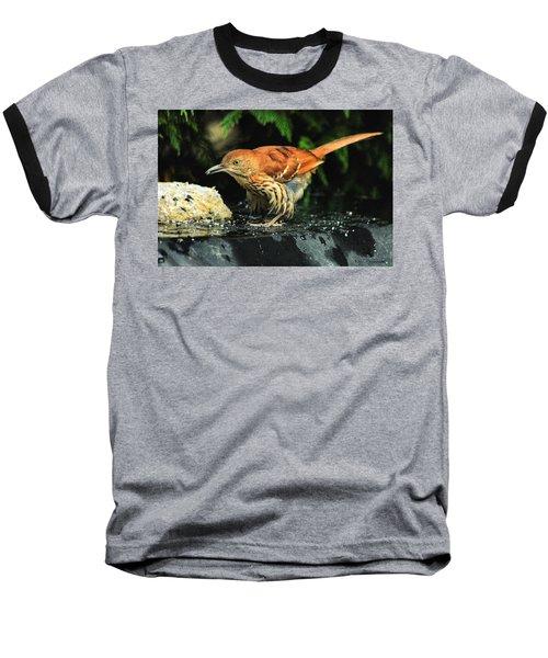 Brown Thrasher Baseball T-Shirt
