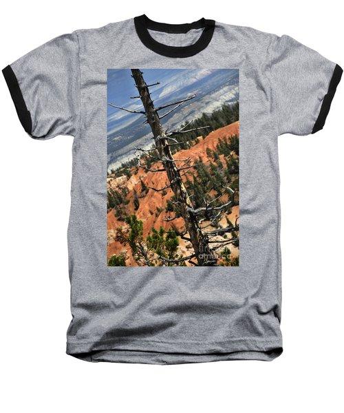 Bryce Tree Baseball T-Shirt