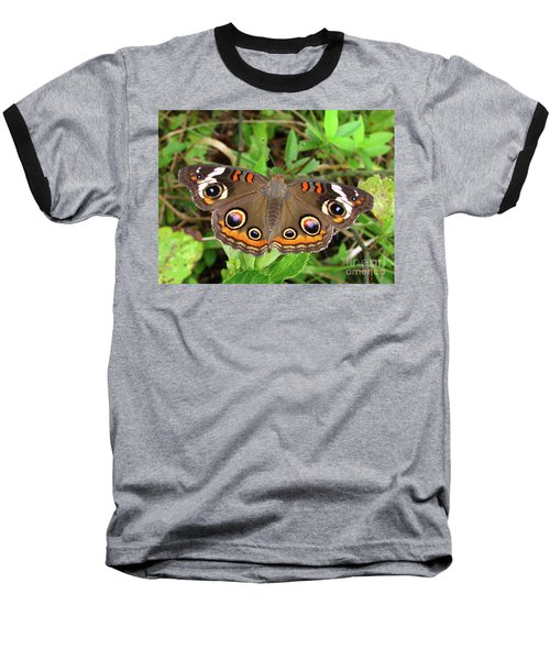 Baseball T-Shirt featuring the photograph Buckeye Butterfly by Donna Brown