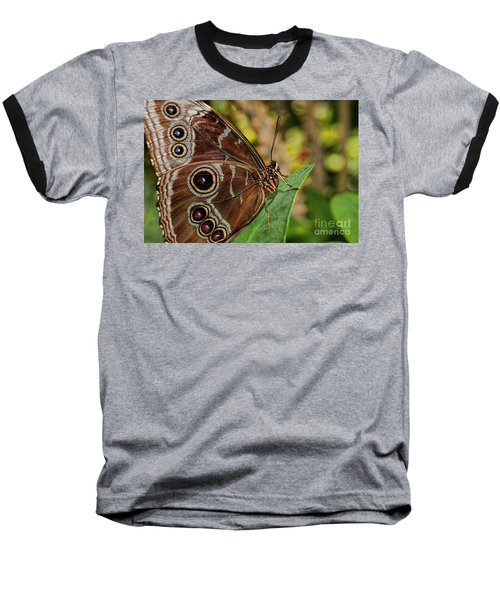 Baseball T-Shirt featuring the photograph Blue Morpho Butterfly by Olga Hamilton
