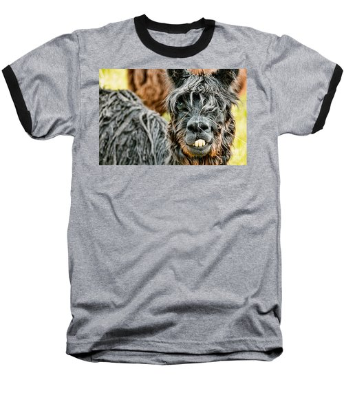Baseball T-Shirt featuring the photograph Bucky The Alpaca by David Lawson