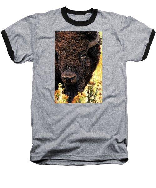 Ragweed Buffalo Baseball T-Shirt by Jim Pavelle