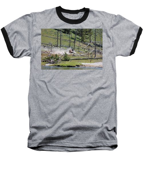 Buffalo Dust Bath Baseball T-Shirt