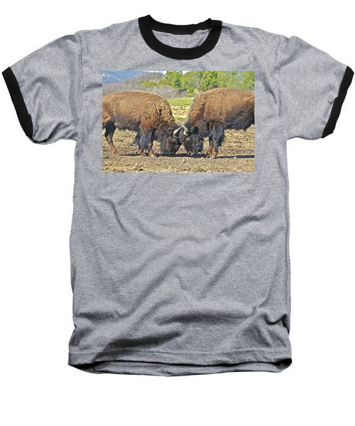 Buffaloes At Play Baseball T-Shirt