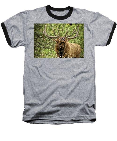Bugling Bull Elk II Baseball T-Shirt by Ron White