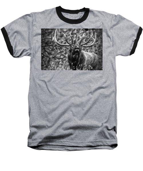 Bull Elk Bugling Black And White Baseball T-Shirt by Ron White