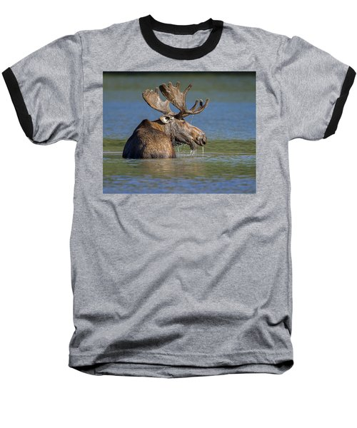 Baseball T-Shirt featuring the photograph Bull Moose At Fishercap by Jack Bell