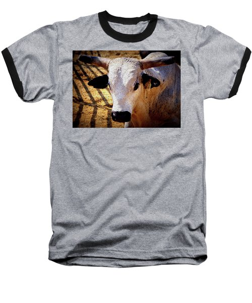 Bull Riders - Nightmare - Rodeo Bull Baseball T-Shirt