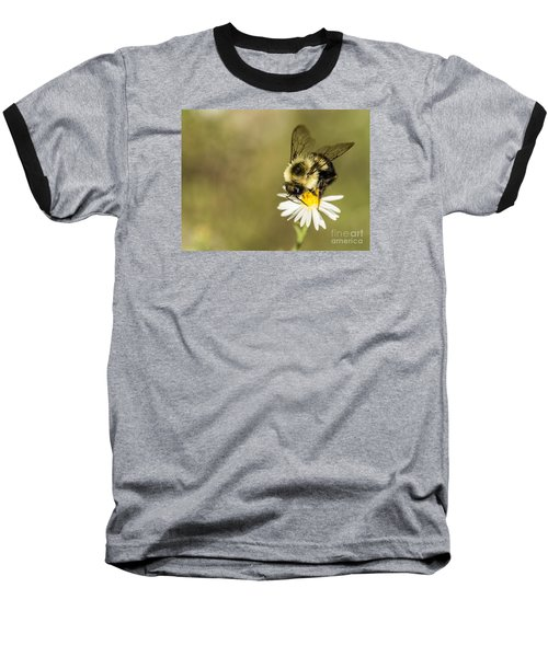 Bumble Bee Macro Baseball T-Shirt