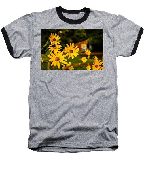 Bumble Bee On A Western Sunflower Baseball T-Shirt