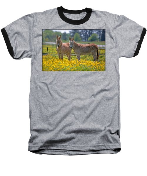 Burros In The Buttercups Baseball T-Shirt by Suzanne Stout