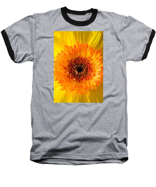 Burst Of Sunshine Baseball T-Shirt by Shelby  Young