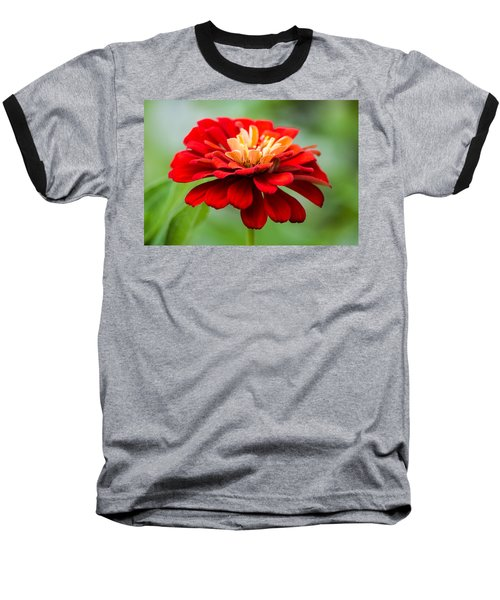 Bursts Of Color Baseball T-Shirt