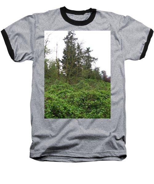 Bus Stop Greenbelt Baseball T-Shirt by David Trotter