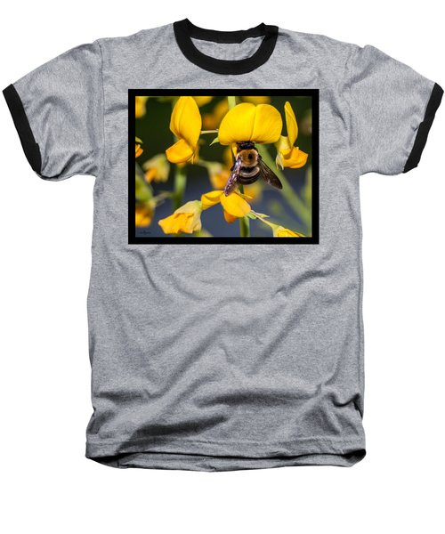 Busy Bee 3 Baseball T-Shirt