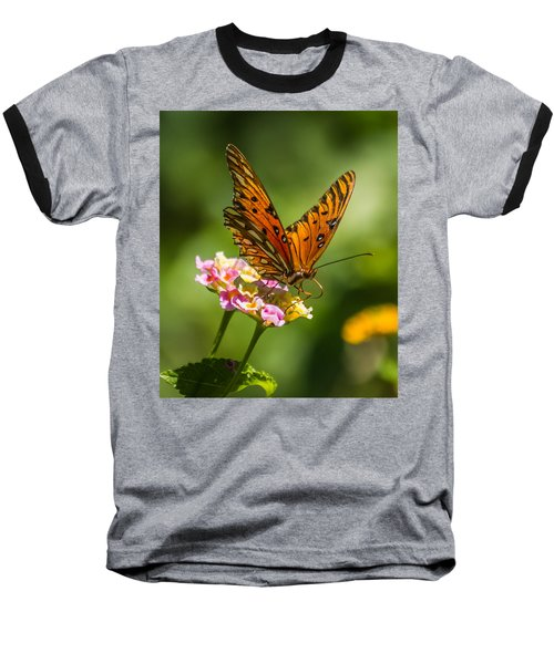 Busy Butterfly Baseball T-Shirt by Jane Luxton