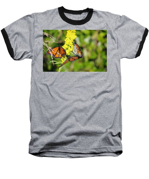 Butterflies Abound Baseball T-Shirt