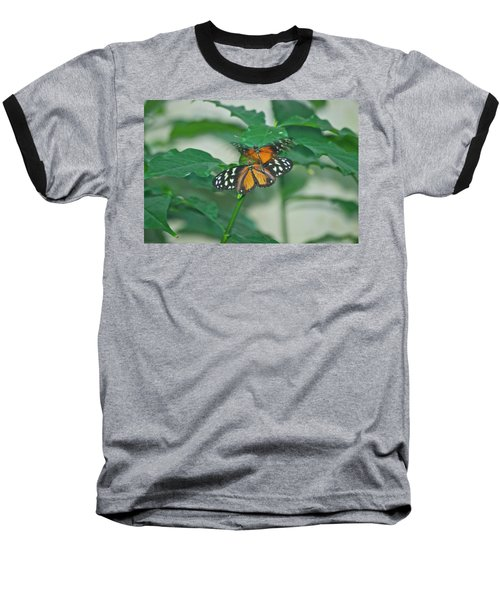 Baseball T-Shirt featuring the photograph Butterflies Gentle Touch by Thomas Woolworth