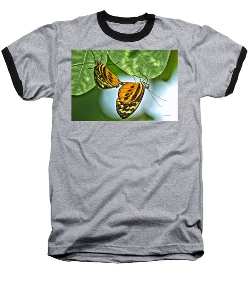 Baseball T-Shirt featuring the photograph Butterflies Mating by Thomas Woolworth
