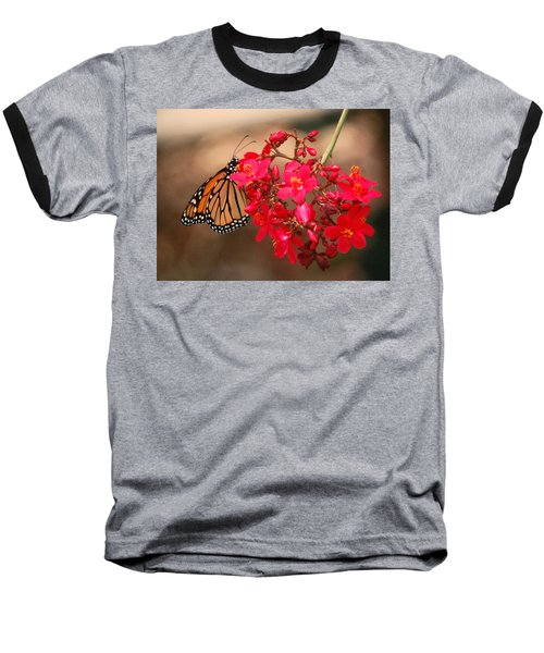 Baseball T-Shirt featuring the photograph Butterfly 1 by Leticia Latocki