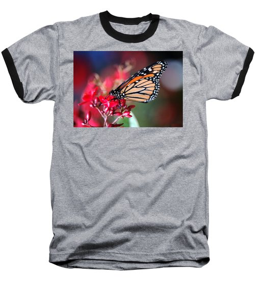 Baseball T-Shirt featuring the photograph Butterfly 2 by Leticia Latocki